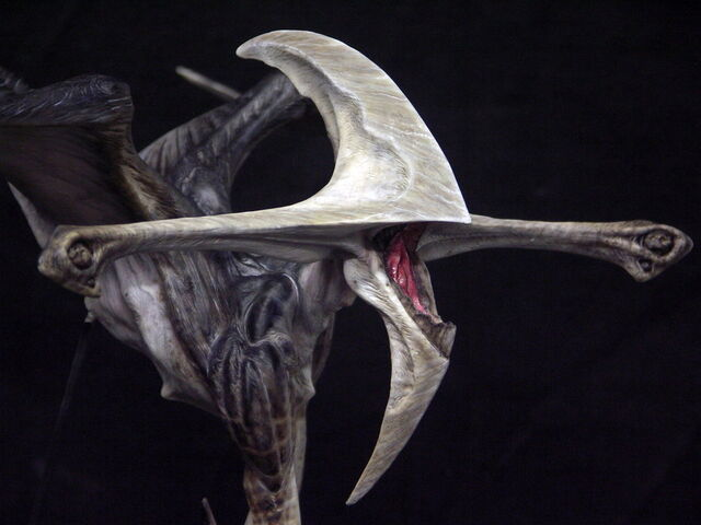 File:Pitchblack alien by goblin bones-d3bl7vd.jpg