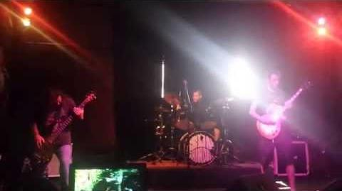 Sungrinder - Black Boar
