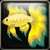 Fantail Icon