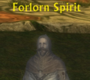 Forlorn Spirit