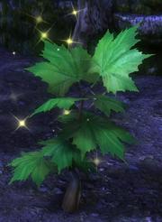 Albidis Plant Node