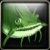 Green Widemouth Icon