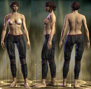 PvP R6 Leather Legs Vigilante Female