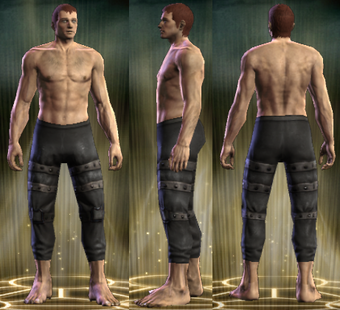 PvP R4 Leather Seeker Legs Male