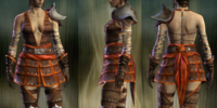 Conspirator's Leather Set