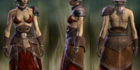 Patrician's Cloth Set