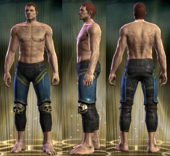 PvP R4 Plate Tactician Legs Male
