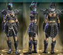 Defiant Raid Leather Set