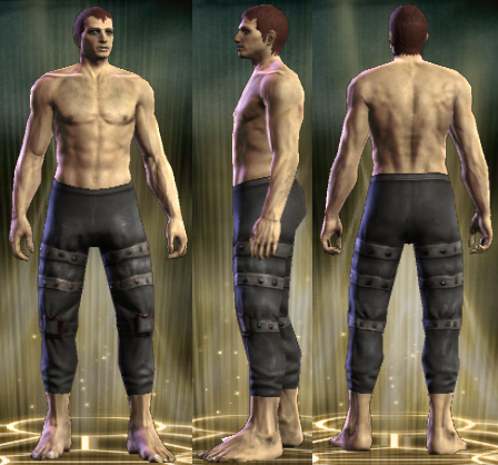 File:PvP R4 Leather Legs Seditionist Male.png