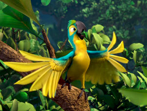 Mainpage-Navmap-Thumb-Blue-and-gold-Macaw