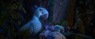 Jewel's Lullaby