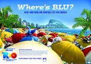 Rio activity sheet where blu