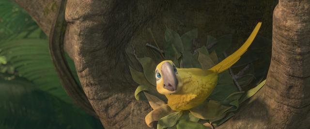 File:Sad macaw.png