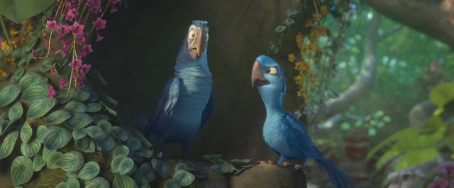 File:Eduardo and macaw.png