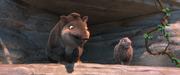 Tapir and porcupine