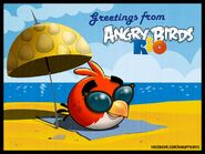 Angry-birds-rio-update