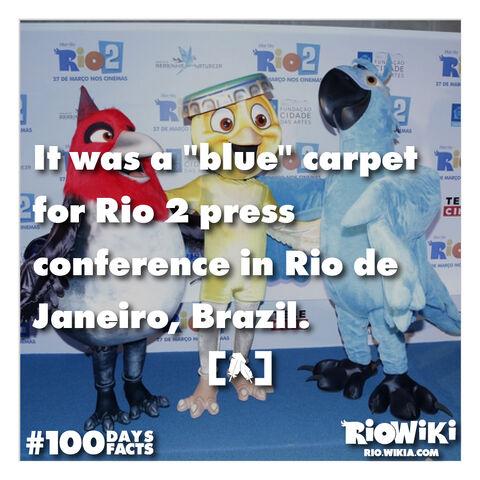 File:Rio-Wiki-100Days100Facts-008.jpg