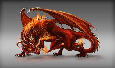 Dragon Image-10
