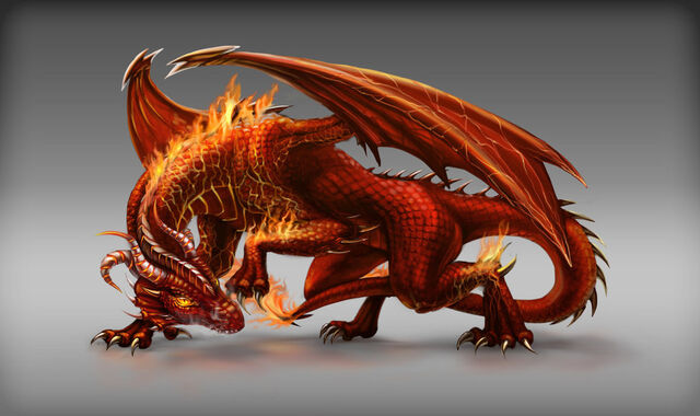 File:Dragon Image-10.jpg