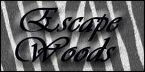 Escape Woods2