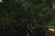 Gnomes' Village1
