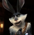 Bunny 31.png