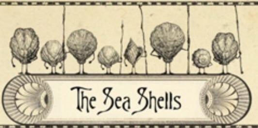 File:SeaShells.jpg