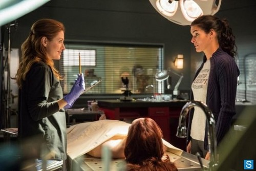 File:-Rizzoli-and-Isles-Episode-4-01-We-Are-Family-Promotional-Photos-rizzoli-and-isles-34649488-500-334.jpg