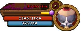 RudbeckiaBar