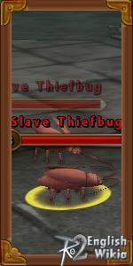 Slave Thiefbug