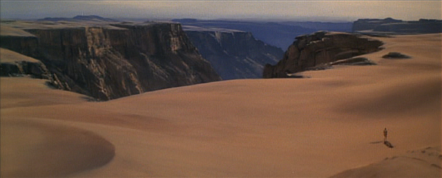 File:Entrance to the oasis.png