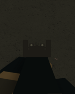 AK12 Iron Sights