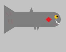 Evil Small Shark