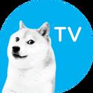 RTVNDogeTVlogo
