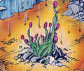 Robotech the Graphic Novel Flower of Life.png