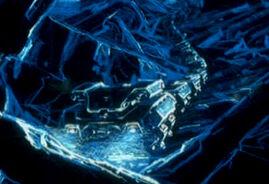 Hk silverfish pic2