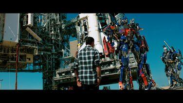 Optimus xantium