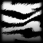 Tora decal icon