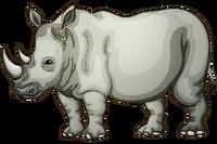 Rhinoceros Insignia