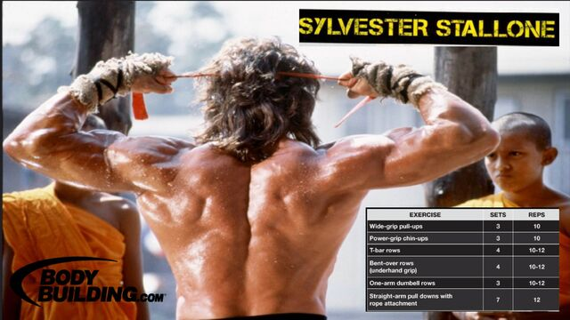 File:Sylvester Stallone Back Workout.JPG