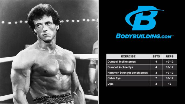 File:Sylvester Stallone Chest Workout.JPG