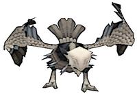 123 Dark Vulture