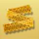 Goldenribbon