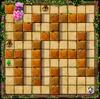Little Dragon Maze 1