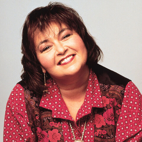 File:Roseanne-Cast-Current-Upcoming-Projects.jpg