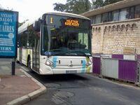 Bus vitalis (3)