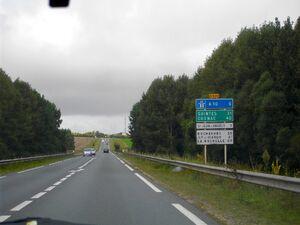 N139 (1).JPG