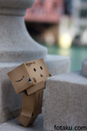 Danbo-in-the-city-2