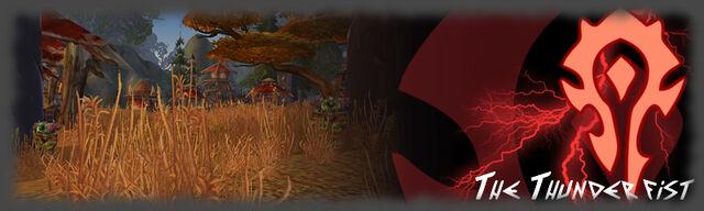 File:TheThunderfistWarband-Banner.jpg