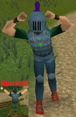 Nibor9198.2